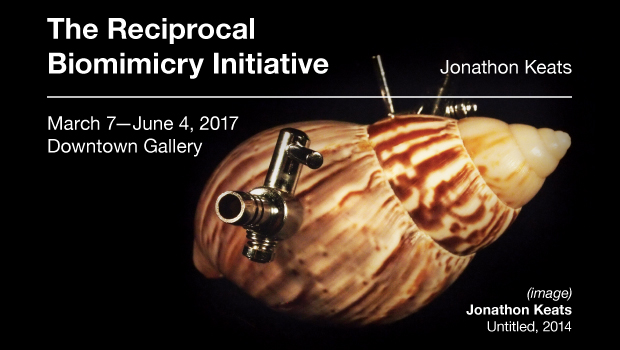 The Reciprocal Biomimicry Initiative – Opens March 7